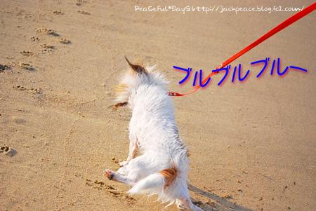 130817_kataonami13.jpg