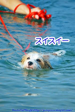 130817_kataonami18.jpg