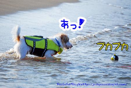 130817_kataonami4.jpg