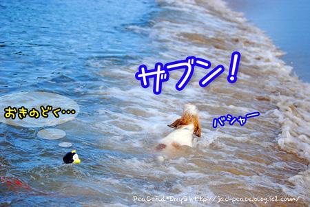 130821_umi14.jpg