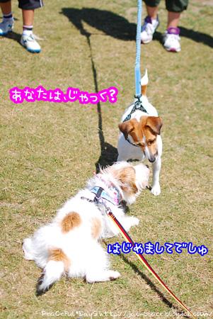 130827_biwako9.jpg