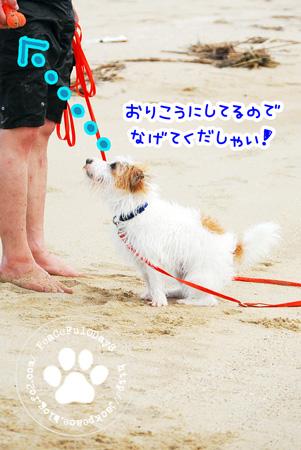 130903_umi1.jpg