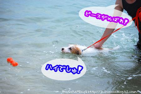 130903_umi6.jpg