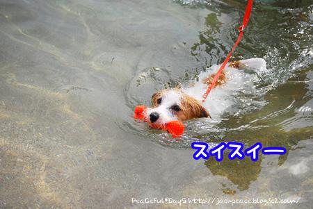 130903_umi9.jpg