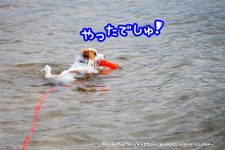 130909_umi10.jpg