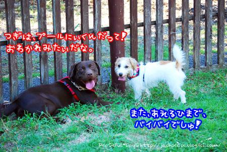 130921_yuasa18.jpg
