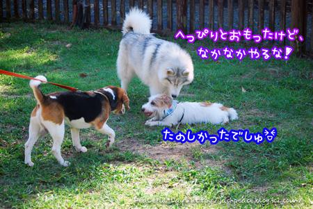 130921_yuasa3.jpg