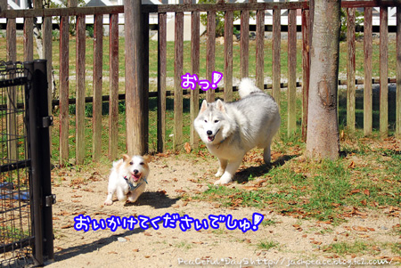 130921_yuasa5.jpg