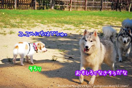 130921_yuasa6.jpg