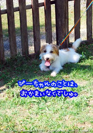 130921_yuasa7.jpg
