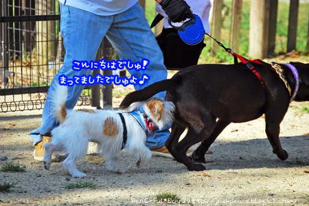 130921_yuasa9.jpg