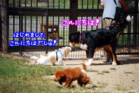 130926_yuasa.jpg