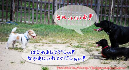 130926_yuasa1.jpg