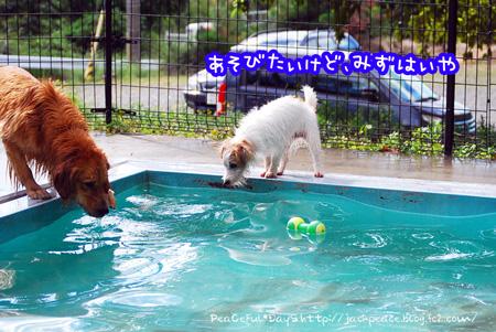130926_yuasa12_edited-1.jpg