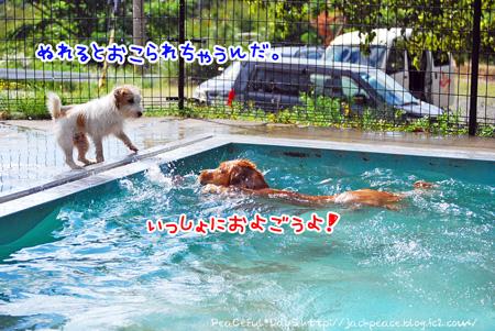 130926_yuasa13_edited-1.jpg