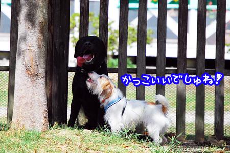 130926_yuasa3.jpg