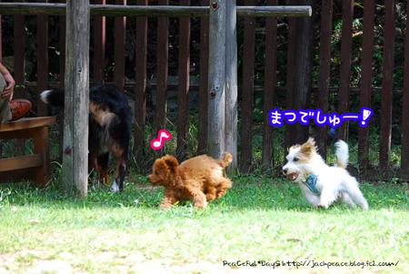 130926_yuasa4.jpg