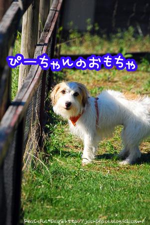 130927_yuasa11.jpg