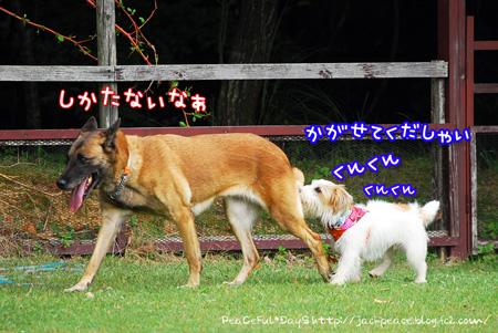 130929_yuasa6.jpg
