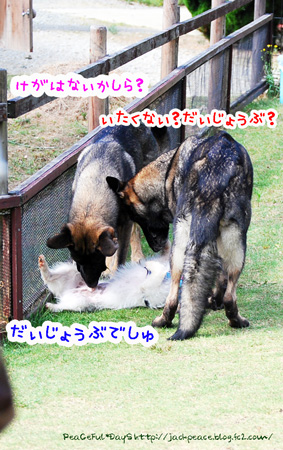 131007_yuasa10.jpg