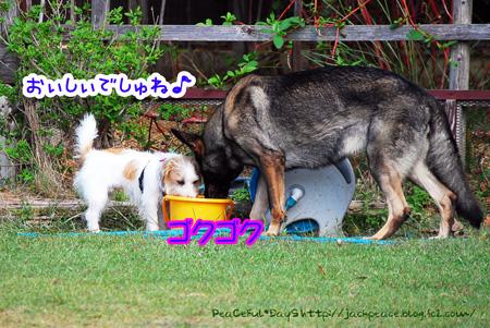 131007_yuasa11.jpg