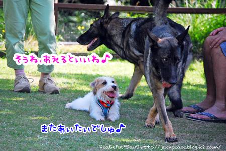 131007_yuasa12.jpg