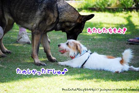 131007_yuasa13.jpg