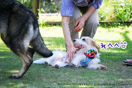 131007_yuasa14.jpg