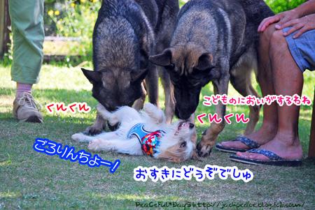 131007_yuasa15.jpg