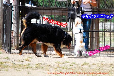 131007_yuasa2.jpg