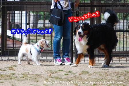 131007_yuasa3.jpg