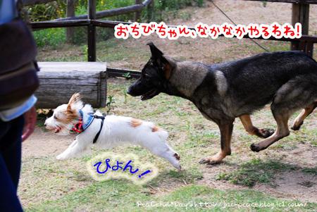 131007_yuasa6.jpg