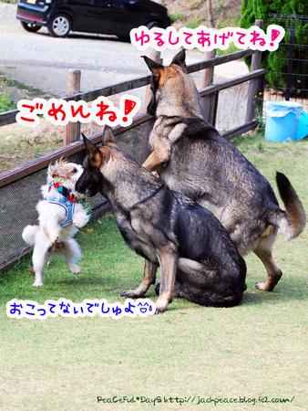 131007_yuasa9.jpg