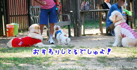 131014_yuasa10.jpg