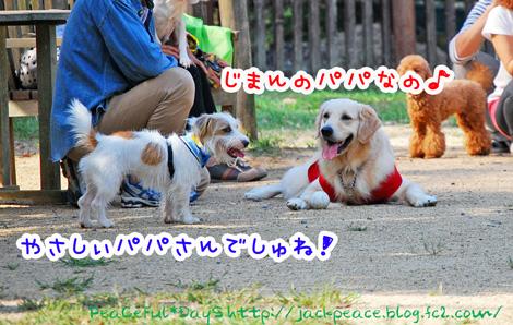 131014_yuasa11.jpg
