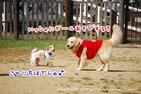 131014_yuasa12.jpg