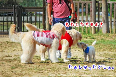 131014_yuasa14.jpg
