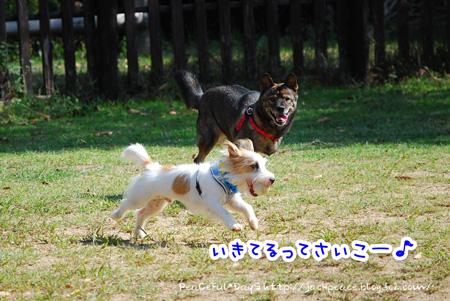 131014_yuasa2.jpg