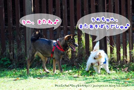131014_yuasa3.jpg