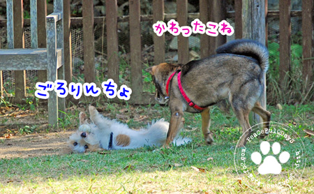 131014_yuasa4.jpg
