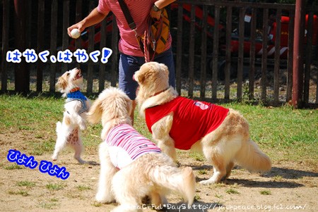 131014_yuasa5.jpg