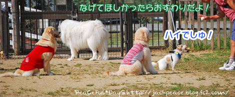 131014_yuasa6.jpg