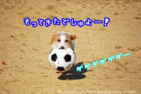 131021_yuasa4.jpg