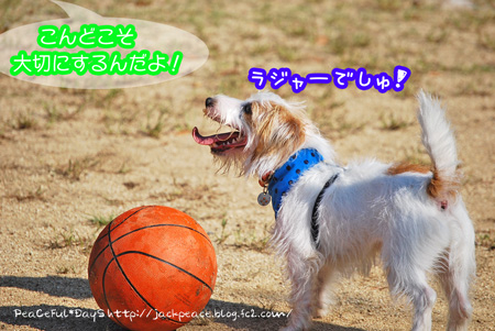 131028_yuasa.jpg