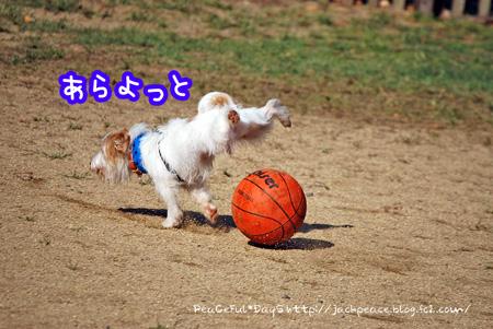 131028_yuasa6.jpg