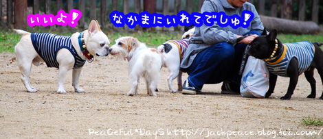 131103_yuasa.jpg