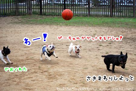 131103_yuasa11.jpg