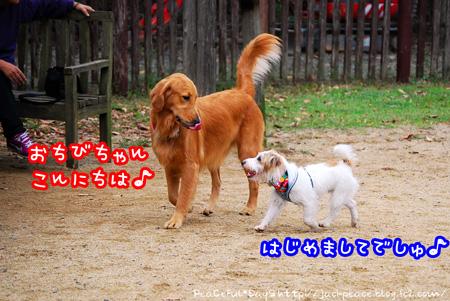 131103_yuasa13.jpg