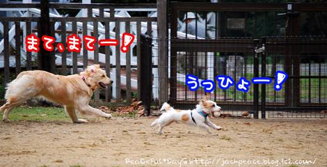 131103_yuasa16.jpg