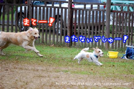 131103_yuasa18.jpg
